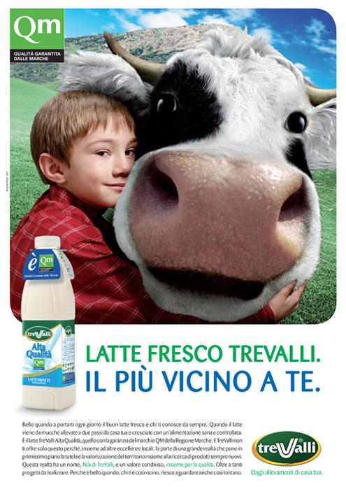 TREVALLI_MUCCA