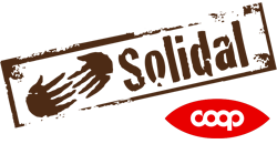 Logo Solidal